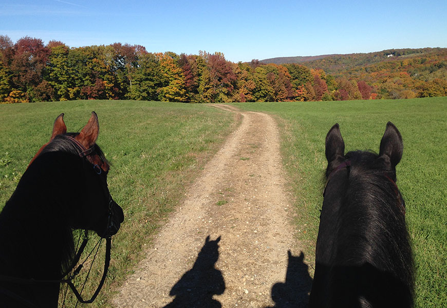 """""""Riding country is our priority – dirt roads and trails – and the GMHA members who come to South Woodstock to enjoy them."""" Roger Maher, longtime GMHA Officer and Supporter, in 1958."""