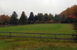 Rush-Meadow-Ring-Fall-2015
